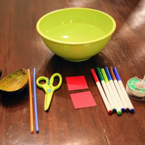 supplies for avocado boat craft
