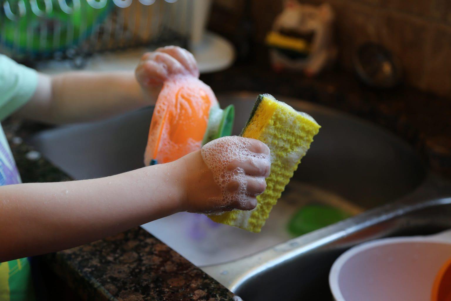Child holding a sponge