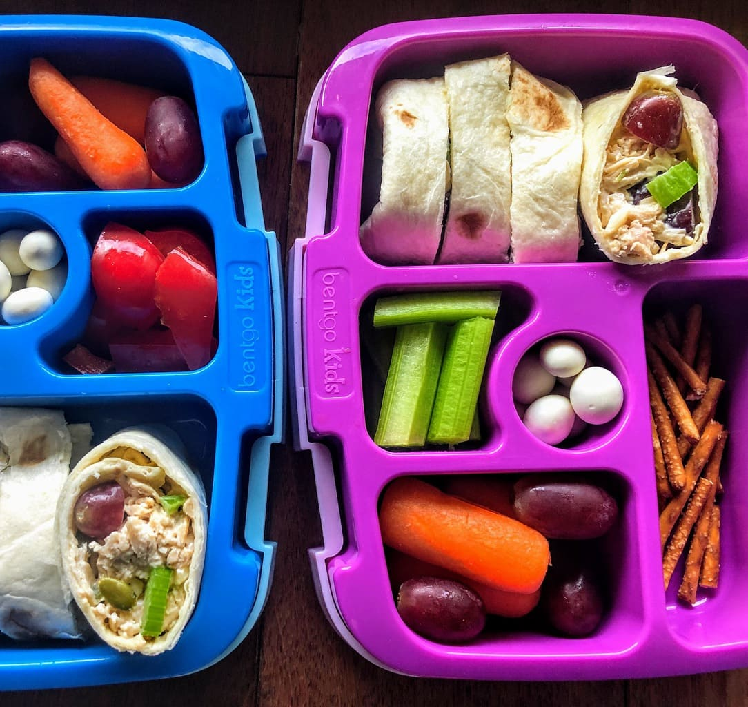 open lunch box for kids with chicken salad wraps, fruits and veggies