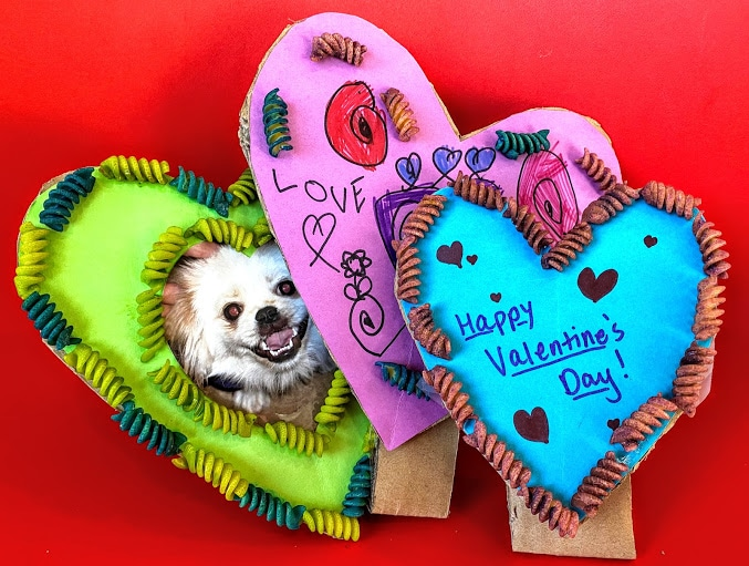 three homemade heart shaped frames with dog photo, valentine's messages and kids drawing