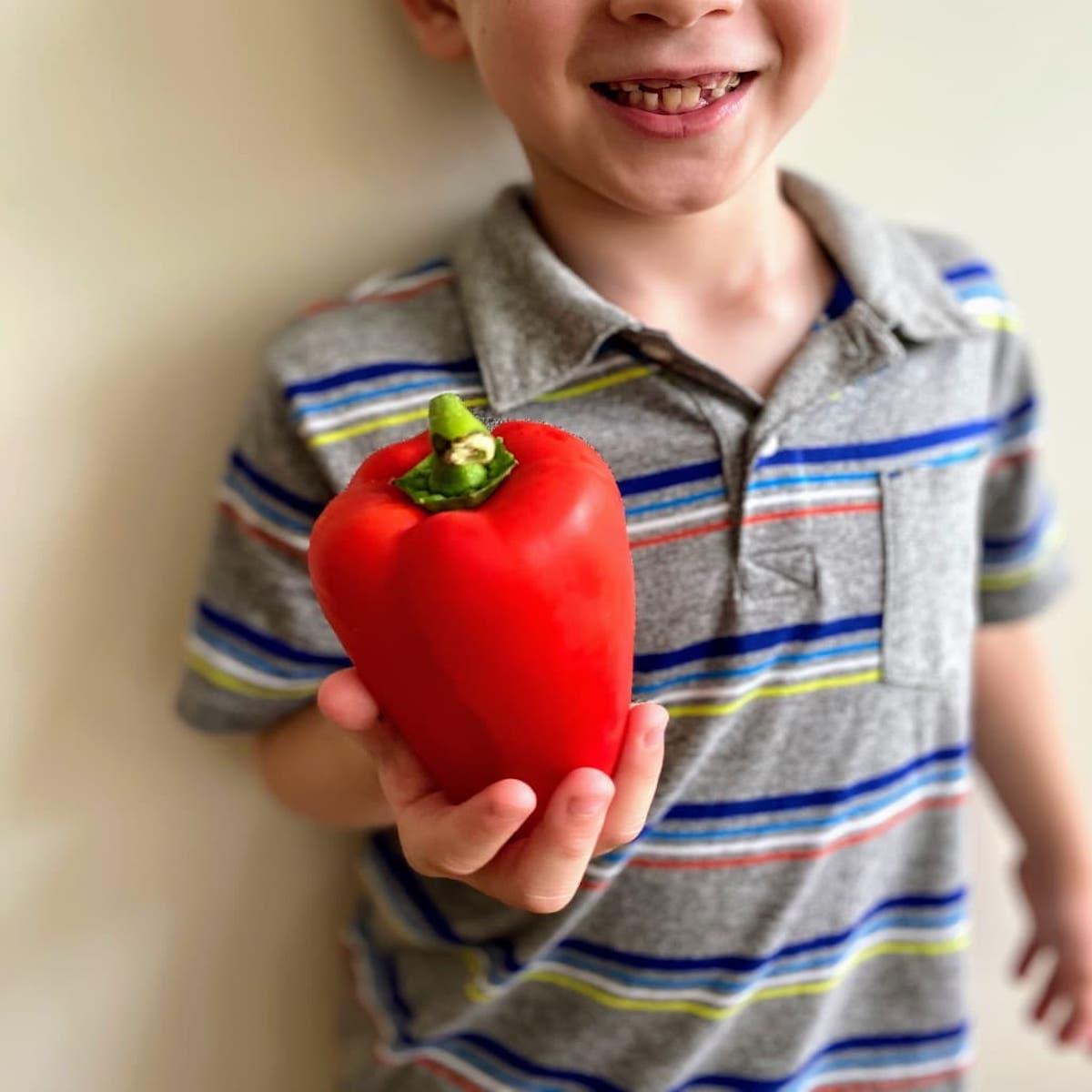 boy holding red bell pepper