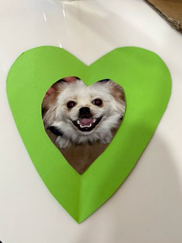 paper heart with dog photo