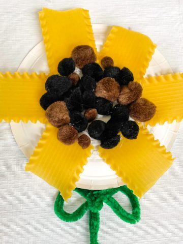 paper plate sunflower made from lasagna noodles and pompoms
